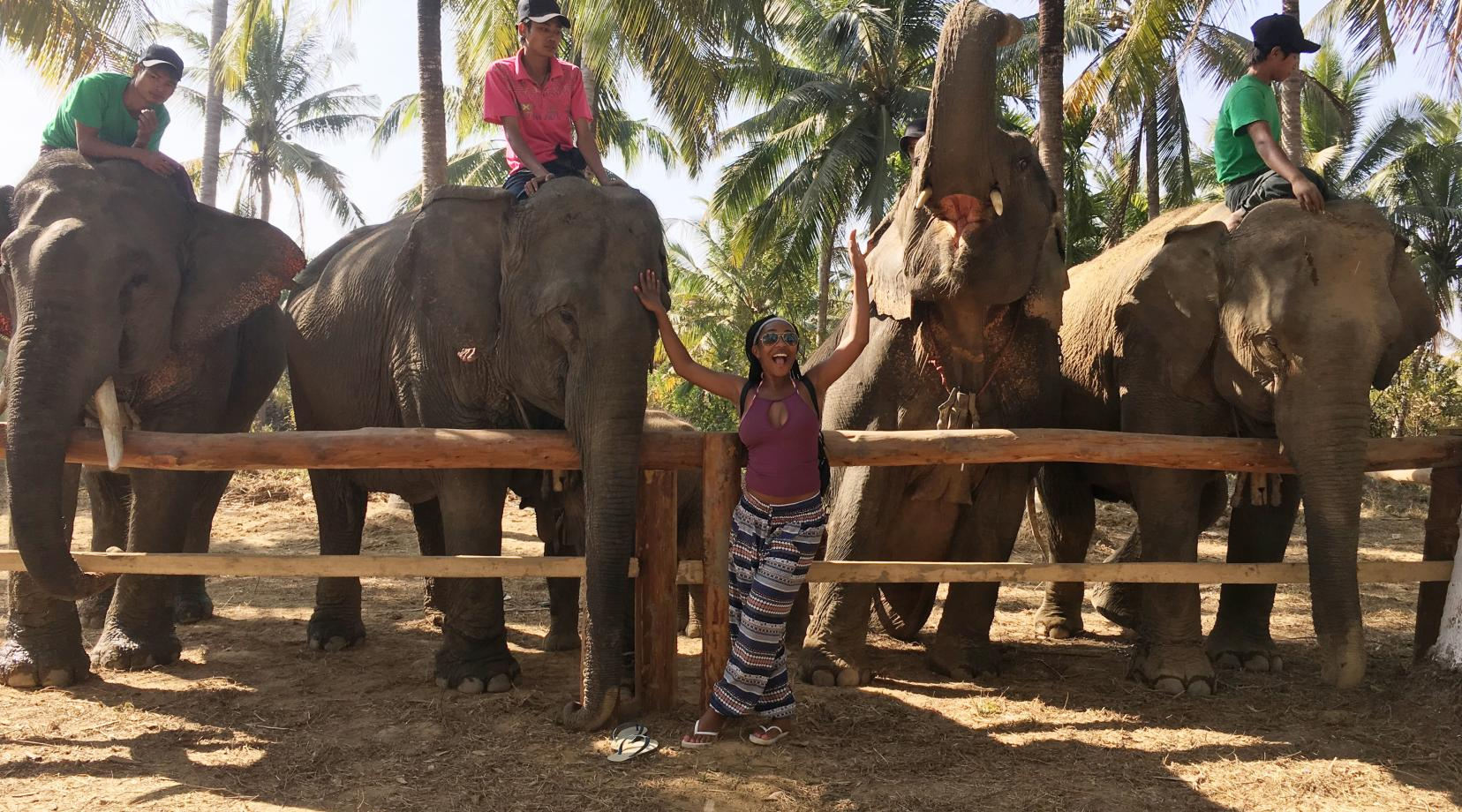 Not many students have an opportunity to take a break from classes and go hang out with elephants, but that is exactly what Deja Marsh did in the spring during her Semester at Sea study abroad experience.