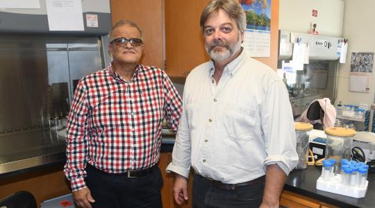 <p>Dr. Aristides Marcano (l), Professor of Physics and principal investigator of the grant, will collaborate with Dr. David Kingsley of the Food Safety Lab on campus on laser research that could lead to improvements in the way foods and biologicals are sanitized.</p>