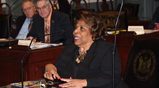 <p>Dr. Wilma Mishoe gives the House Education Committee updates and highlights concerning Delaware State University.</p>