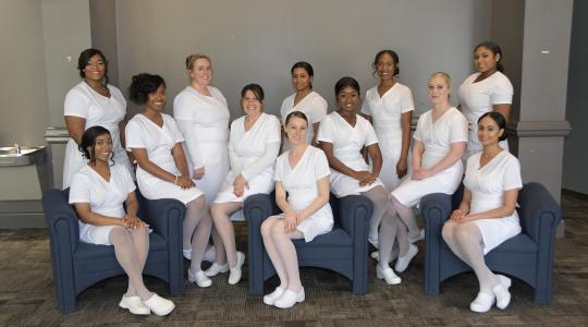 <p>2019 Nursing Class: (seated l-r) Michelle Branch, Nakia Griffin, Lauren Heintzelman, Caitlyn Haberle, Gabriella Crooks, Chelsea Panchisin, Gabrielle Vascos; (standing l-r) Breana Dunn, Michelle Ende, Dajah Bryant, Alexah Liverman and Phylicia Wittock.</p>