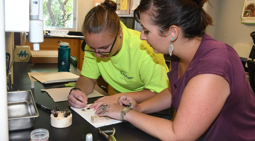<p>Dr. Krystal Hans (r), assistant professor and principal investigator of the three-year, $400,000 National Science Foundation grant, believes the funding will help students like the one she is working with in the lab to get the most out of DSU's Forensic Science Program.</p>