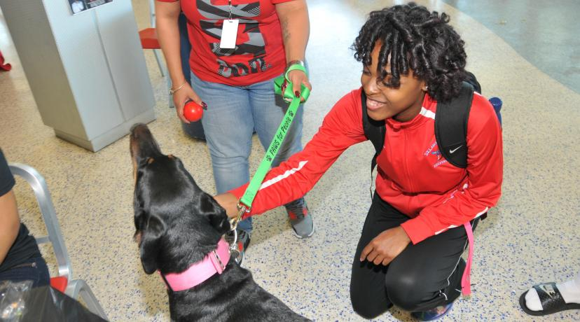 <p>A DSU student learns how pet therapy can reduce stress and anxiety. Such information was shared as part of the National Public Health Week activities in the MLK Jr. Student Center on April 5.</p>