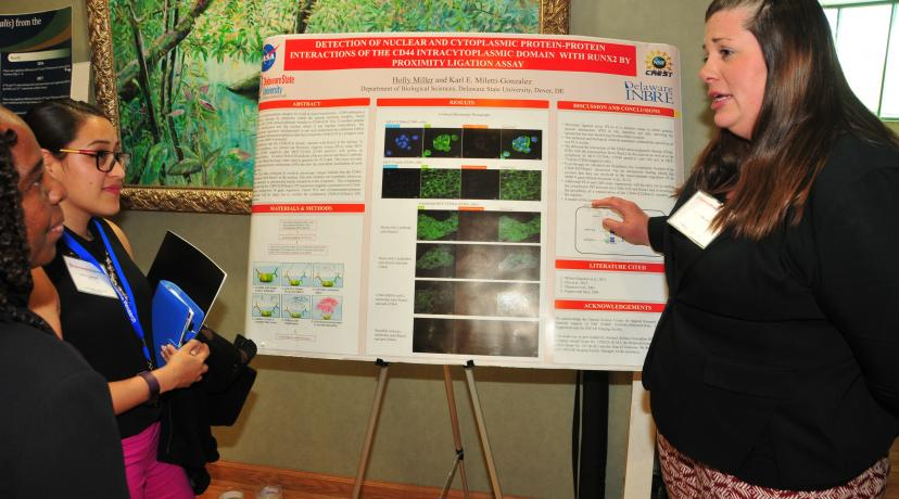 <p>Holly Miller, a biological science graduate students, explains her research poster on the detection of nuclear and cytoplasmic protein and the protein interaction of the CD44 intracytoplasmic domain with RUNX2 by proximity ligation assay.</p>